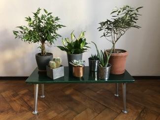 Blumentisch / Blumenbank Retro / Very green