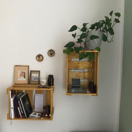 Weinkisten Regal gold / DIY Do it yourself / Efeu