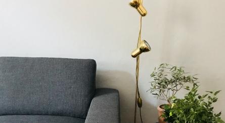 Wohnzimmer / Couch grau / Stehlampe Gold