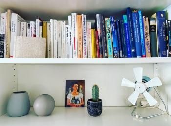 Regal mit Büchern / Vintage Ventilator / Skandi Vasen / Kaktus